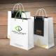 Dịch vụ in túi giấy giá rẻ chuyên nghiệp được nhiều khách hàng yêu thích